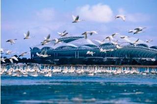 鳥屋野潟エリア 新潟市