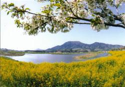 上堰潟(ウワセキガタ)公園 新潟市